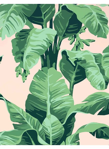 Pacifico Palm Wallpaper by Nathan Turner, Peach
